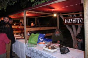 Fiesta Diaguitas (2)