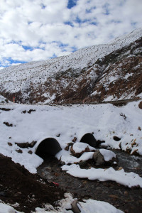 Nieve Sector La Laguna