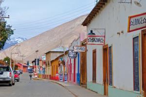Pisco Elqui (1)