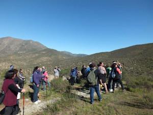 Caminata Ambiental Quebrada de Talca (1)