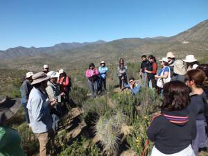 Caminata Ambiental Quebrada de Talca (3)