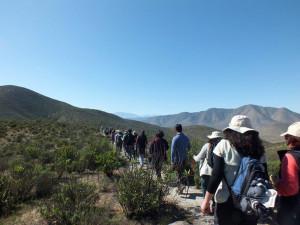 Caminata Ambiental Quebrada de Talca (4)