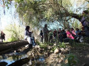 Caminata Ambiental Quebrada de Talca (5)